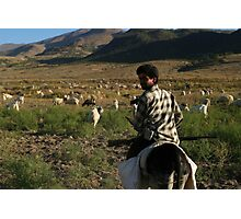 Shepherd at Black Mountain Photographic Print