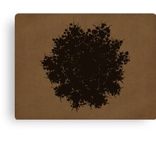 Queen Anne's Lace in Brown & Gray Canvas Print