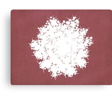 Queen Anne's Lace in Pink & White Canvas Print