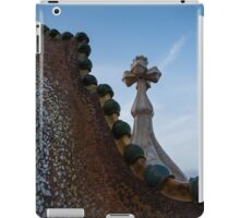 The Spine of the Dragon  iPad Case/Skin