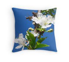 Spring 2012 - Four Throw Pillow
