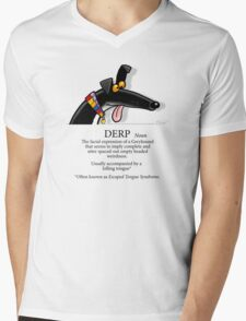 Derp Mens V-Neck T-Shirt