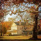 Atsion Mansion by Debra Fedchin