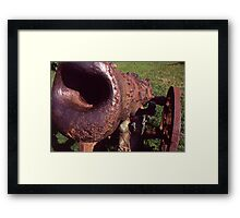 Old Cannon at the Park Framed Print
