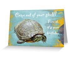 Birthday Card - Painted Turtle Greeting Card
