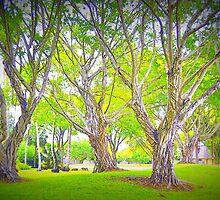 Trees in my Neighborhood by dez7