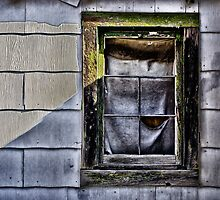 Window by Peter Zurla