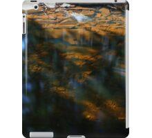 Stream Bottom Color iPad Case/Skin