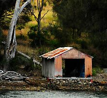 The Orange Boat Shed by Barbara Burkhardt