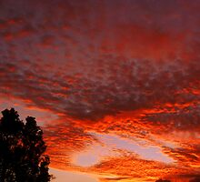 Red Sky and CoCo Clouds by Hapatography