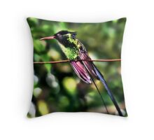 Doctor Bird Throw Pillow