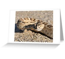 Great Basin Rattler Greeting Card