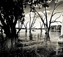 By the lake by naemick