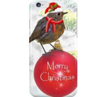 Ornamental Robin iPhone Case/Skin
