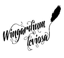 Wingardium leviosa - Harry Potter spells Photographic Print