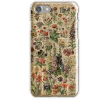 Colourful Wild Meadow Flowers Over Vintage Dictionary Book Page iPhone Case/Skin