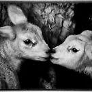 Kissing Cousins by reddragon55