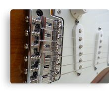 Fender Bridge Canvas Print