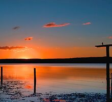 Lake Clarendon - Lockyer Valley Qld Australia by Beth  Wode