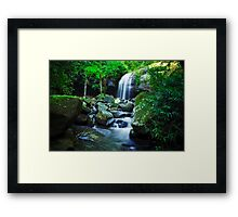 How's the Serenity? Framed Print