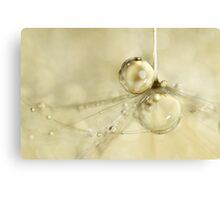 Droplets in Gold Canvas Print