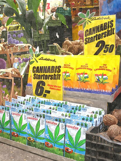Cannabis from Holland by BillKret