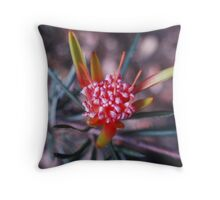 Autumn Red Flower in macro Throw Pillow