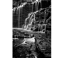 Dazzling  Photographic Print