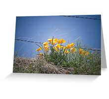 Spring Popping Up Greeting Card
