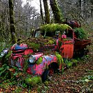 Poor Old Chevy by Charles & Patricia   Harkins ~ Picture Oregon