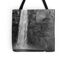 Ithaca Waterfall Tote Bag