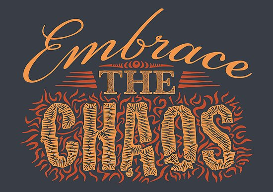 Embrace the Chaos by DoodleDojo