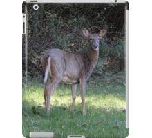 Backyard neighbor iPad Case/Skin