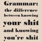 Grammar: The Difference Between Your and You&#x27;re by taiche