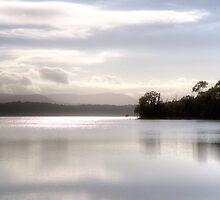 Yan Yean Reservoir by Pauline Tims