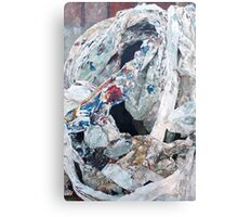 After Sir Francis Bacon (2 of 3) Canvas Print