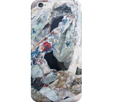 After Sir Francis Bacon (2 of 3) iPhone Case/Skin