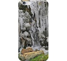 Spain, The Pyrenees Mountains ice droplets on a tree iPhone Case/Skin