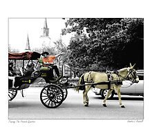 French Quarter Buggy Ride Photographic Print