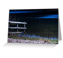Submerged Fence. Greeting Card