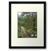 Turkey, Trabzon Province, old stone bridge Framed Print