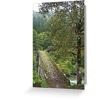 Turkey, Trabzon Province, old stone bridge Greeting Card