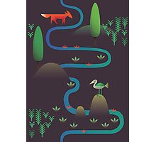 Landscape - Fox and Stream 2 (Pattern) Photographic Print