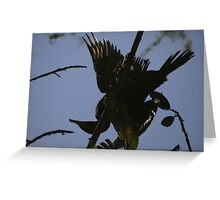 Mirrored Comoran - Comoran Reflejado Greeting Card
