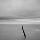 montrose beach by codaimages