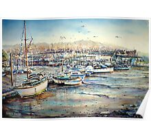 Harbour Life, Mobbing crows & raucous gulls Poster