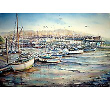 Harbour Life, Mobbing crows & raucous gulls Photographic Print