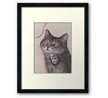 Cat Game Framed Print