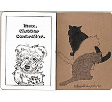 Max & Three Cats Photographic Print