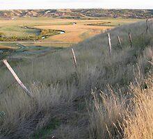 Old Valley Fenceline by Rod J Wood